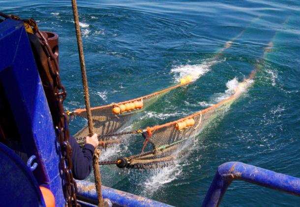 Fischzug in Dänemark: Welche Quellen helfen bei der Fischereiberichterstattung? Eine Kutterfahrt hilft, praktische Fragen besser zu verstehen